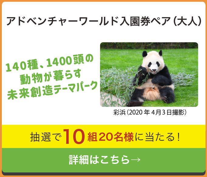 和歌山レシートキャンペーン アドベンチャーワールド入場券(大人)ペア