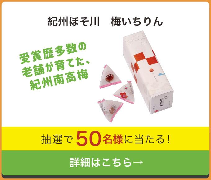 和歌山レシートキャンペーン 紀州ほそ川 お徳用梅いちりん