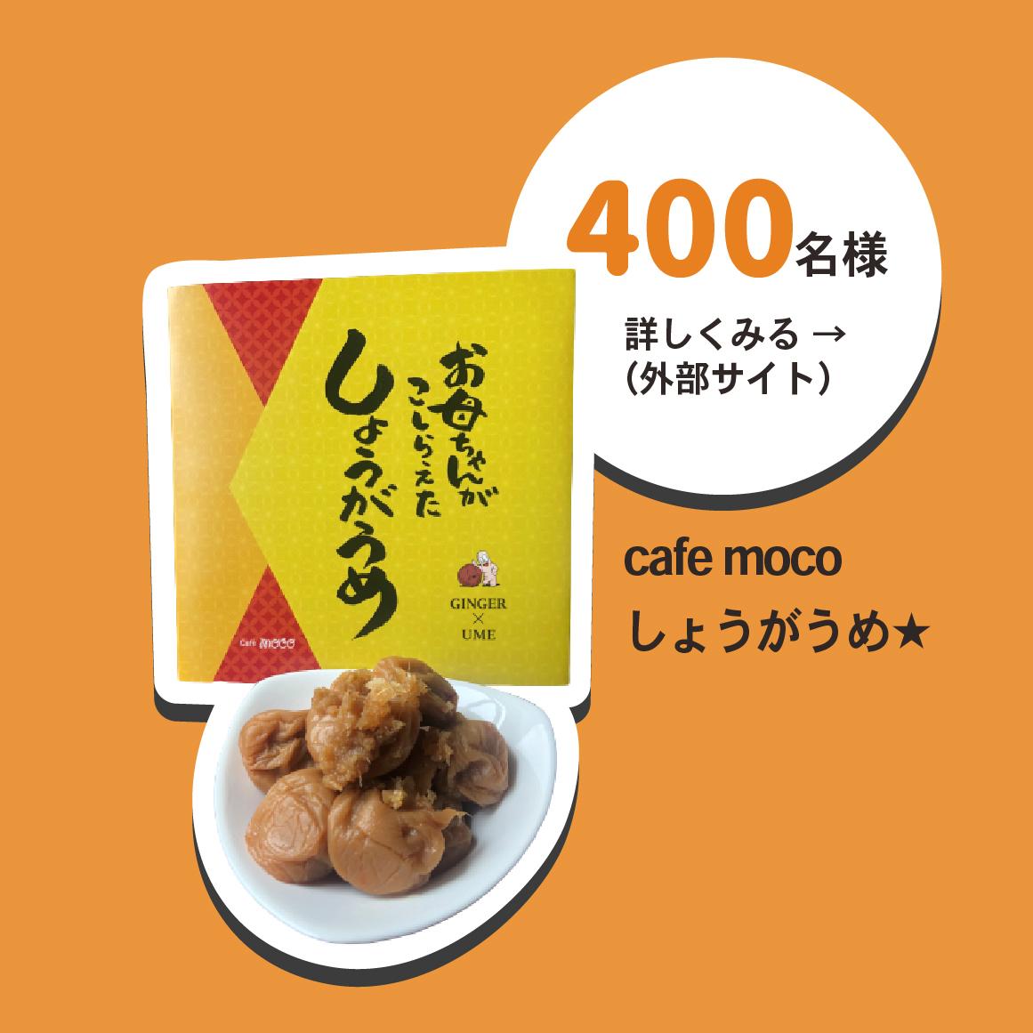 和歌山レシートキャンペーン cafe mocoしょうがうめ