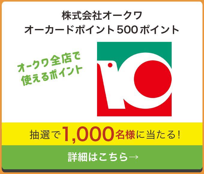 和歌山レシートキャンペーン オークワ ポイント500円分